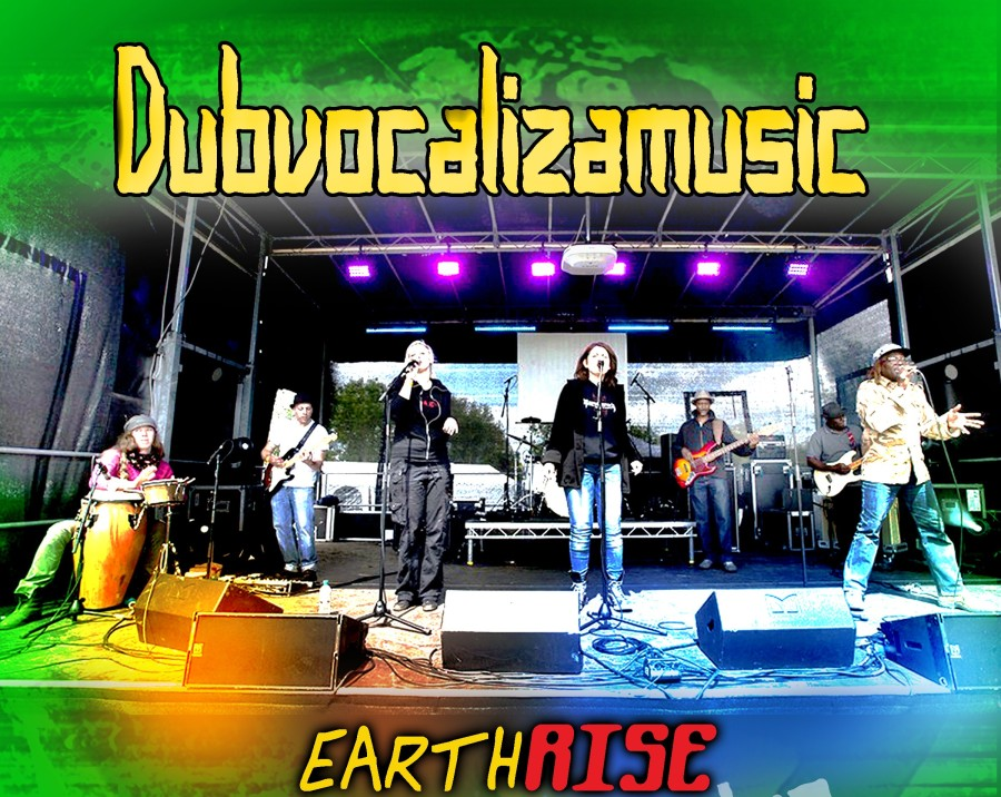Dubvocaliza indie artists album