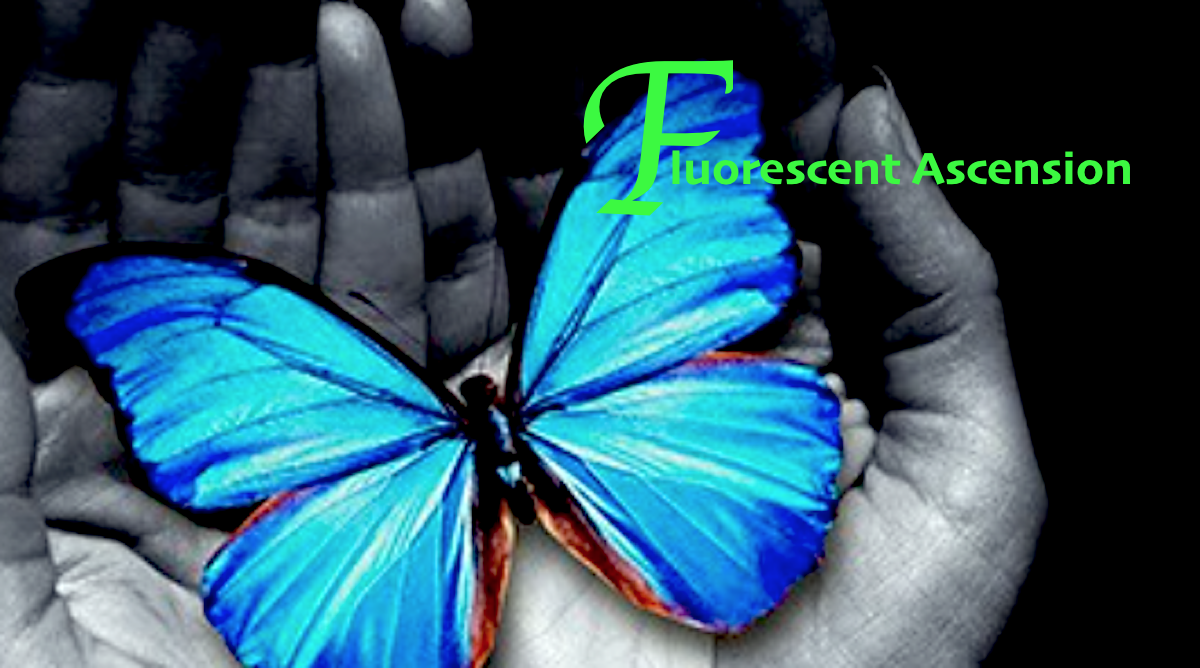 {Behind The Music} Leanne Sansonetti on Fluorescent Ascension